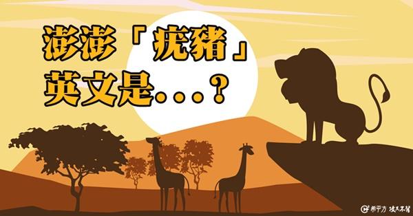 非洲大草原上的動物英文名稱,你都會了嗎?